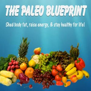 The Paleo Blueprint PLR